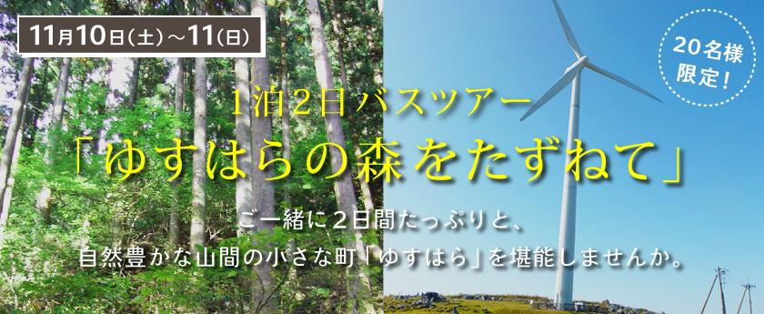 11/10(土)11(日)1泊2日バスツアー「ゆすはらの森をたずねて」